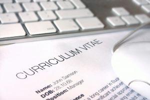 Armando el Curriculum Vitae