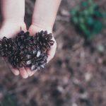 Oportunidades de negocio basadas en la sustentabilidad y el reciclaje